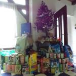 Vánoce v útulku :-)